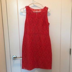 J Crew red floral shift dress, size 6, NWOT